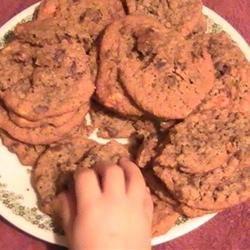 Oatmeal Chocolate Chip Cookies III Nikitig