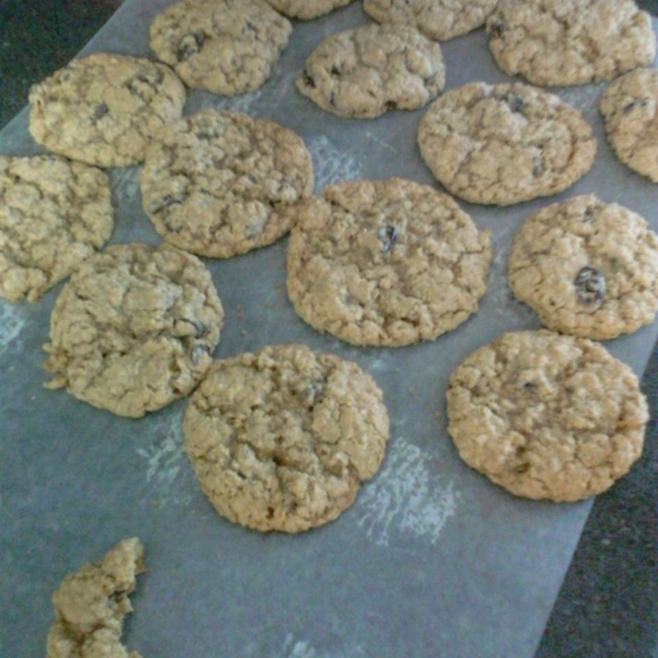 Oatmeal Raisin Cookies I Dianna Kay Michaels