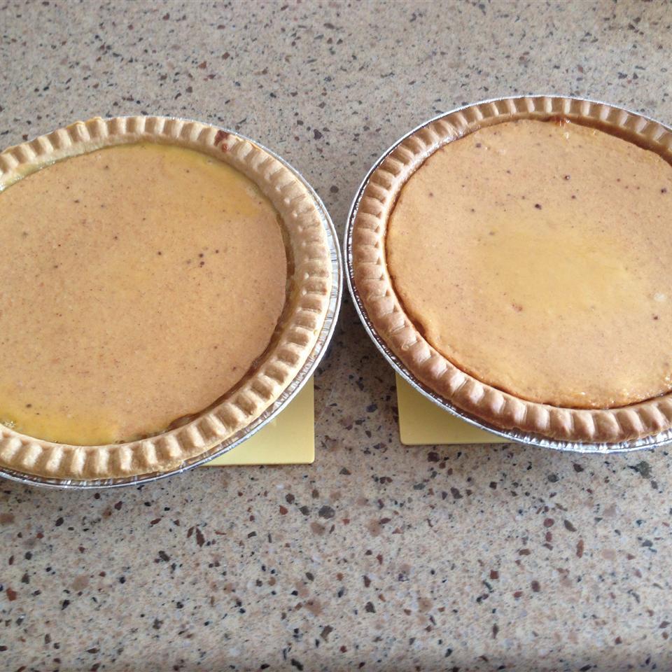 Persimmon Pie Diane Cappiccille