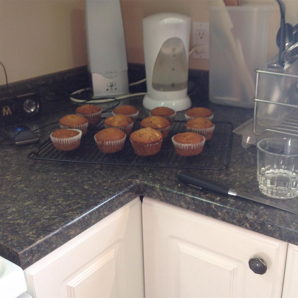 Cranberry Apple Breakfast Muffins