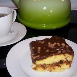 Turtles® Cake I