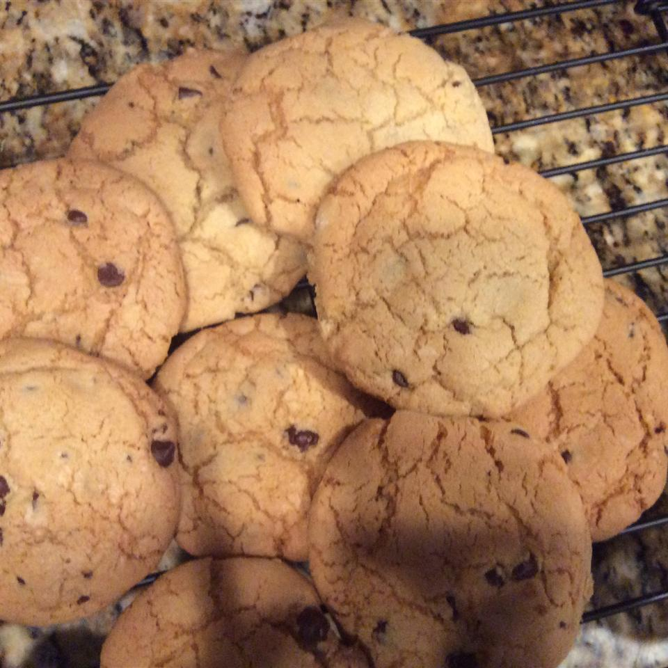 Three Hundred Chocolate Chip Cookies Priya R