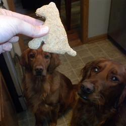 Dog Treats I Curly Sue