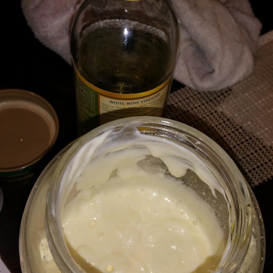 Whole Egg Mayonnaise Karen J Sparks