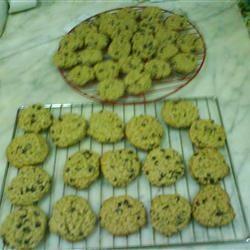 Cocoa Oatmeal Cookies Mashmousha