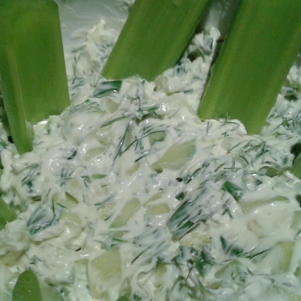 Cucumber Dip II Namaah23