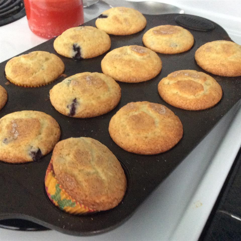 Best of the Best Blueberry Muffins Olivia Jenkimd