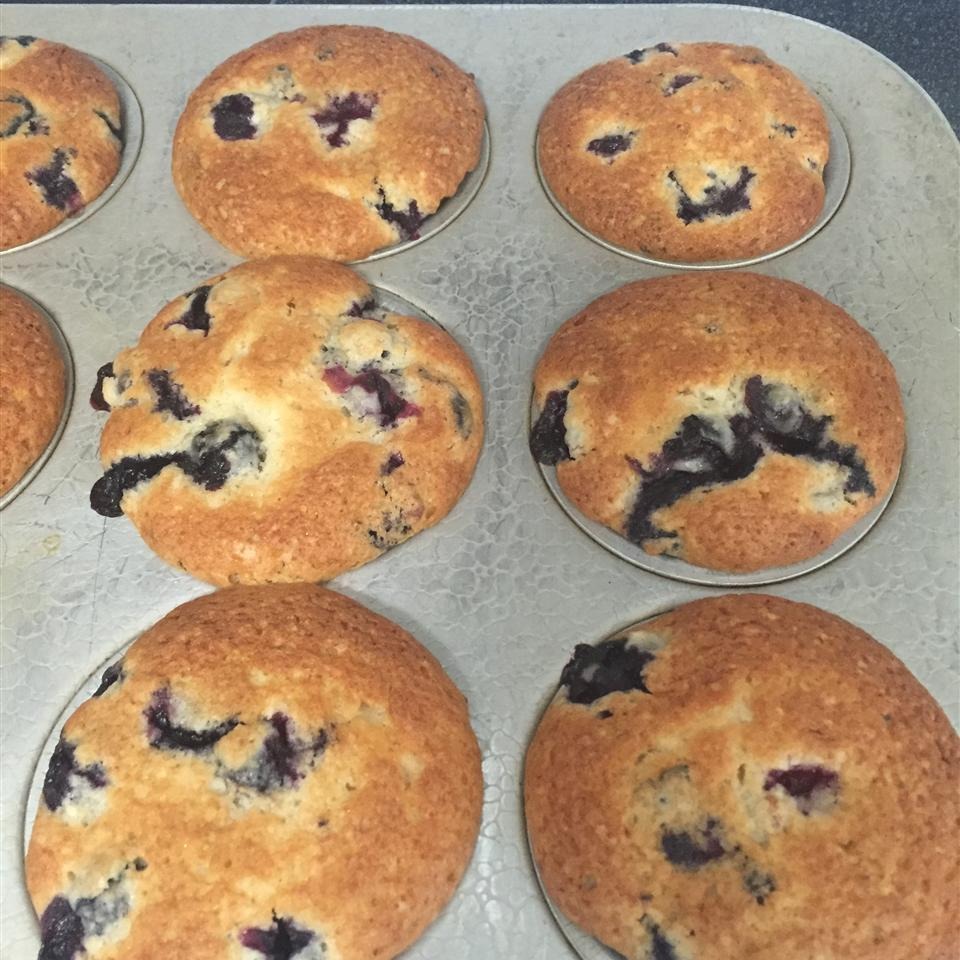 Best of the Best Blueberry Muffins