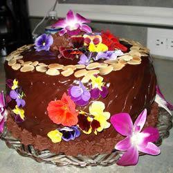 Black Chocolate Cake NickiB