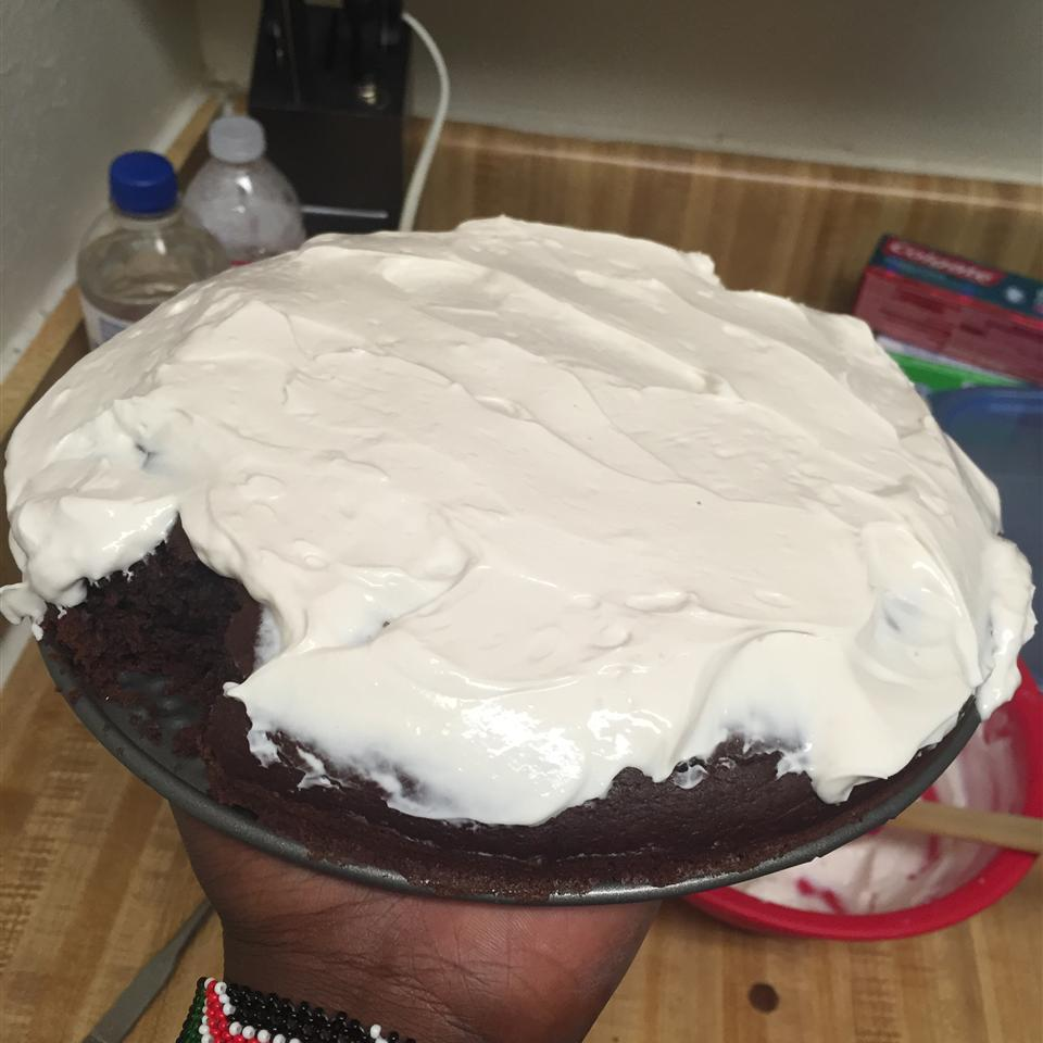 Thirty Minute Cocoa Cake With Quick Cocoa Frosting XYZ