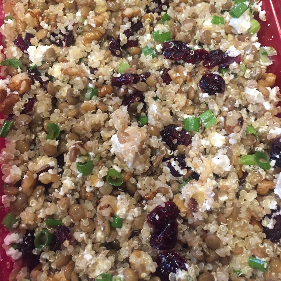 Cranberry Lentil and Quinoa Salad Manuela Guntert- Barson