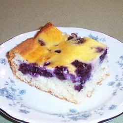 Blueberry Bars Anne Warren