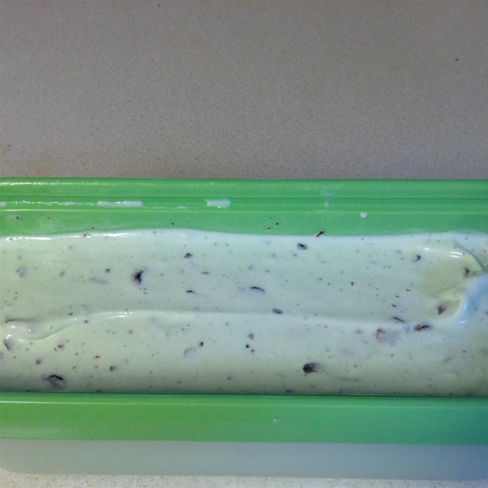 Homemade Mint Chocolate Chip Ice Cream Katrina