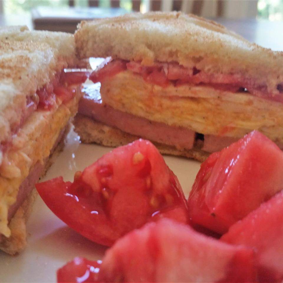 Tom's Scrambled Egg Sandwich DEVSOL