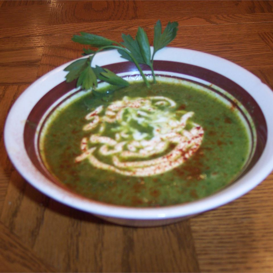 Jade Garden Soup HAYNIE13