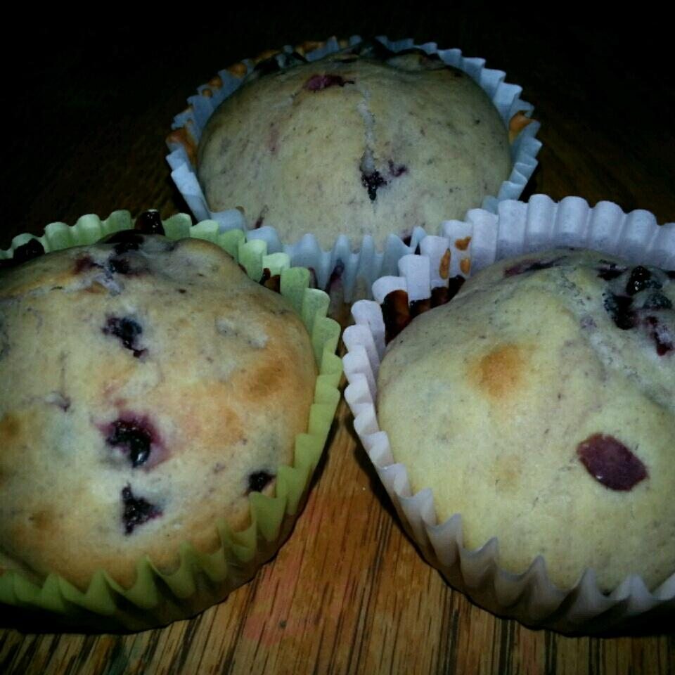 Wild Blackberry Muffins Michael & Cyn
