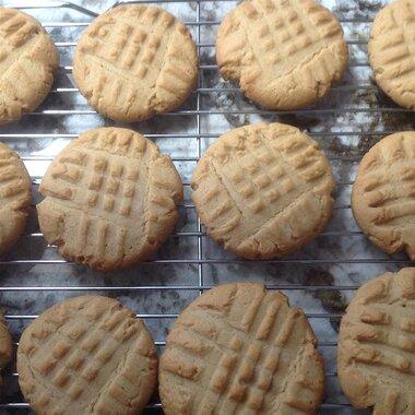 favorite peanut butter cookies recipe