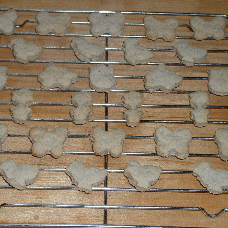 Animal Crackers Charity Danjczek