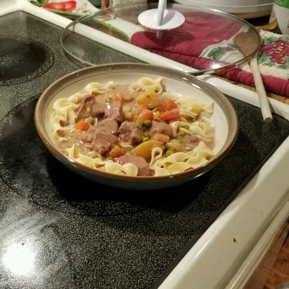 Slow Cooker Beef Stew III Elena Cortez-Schumacher