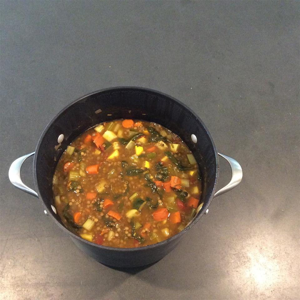 Moroccan Lentil Soup with Veggies Jurgen