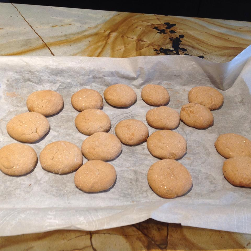 Gingersnap Cookies Christine Edwards