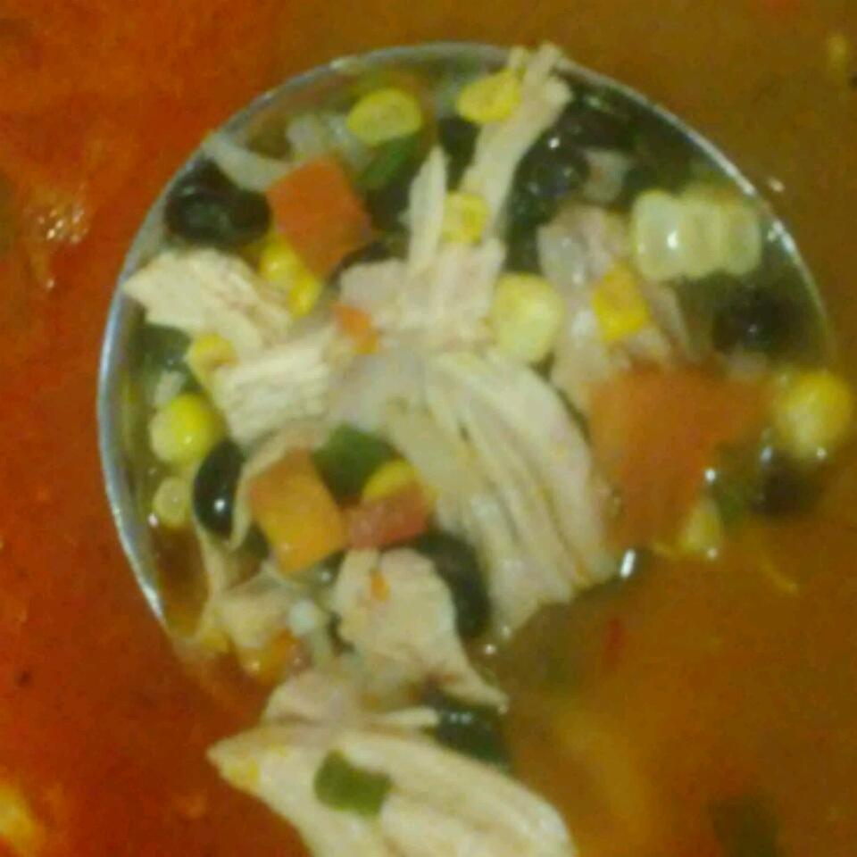 Southwest Tortilla Soup Nate Marchus