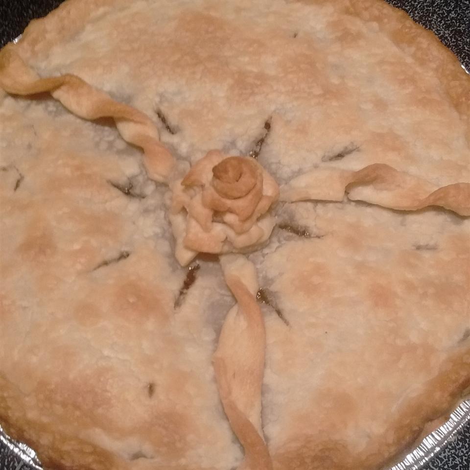 Old Fashioned Raisin Pie I Traciee Pollard