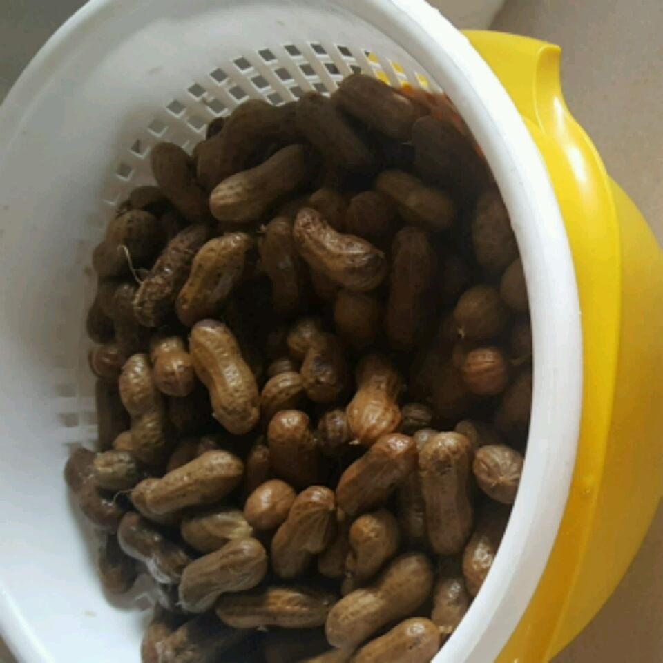 Garlic and Onion Boiled Peanuts Vicki McCurdy