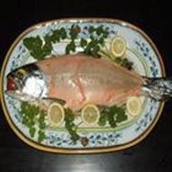 Slow-Roasted Whole Salmon