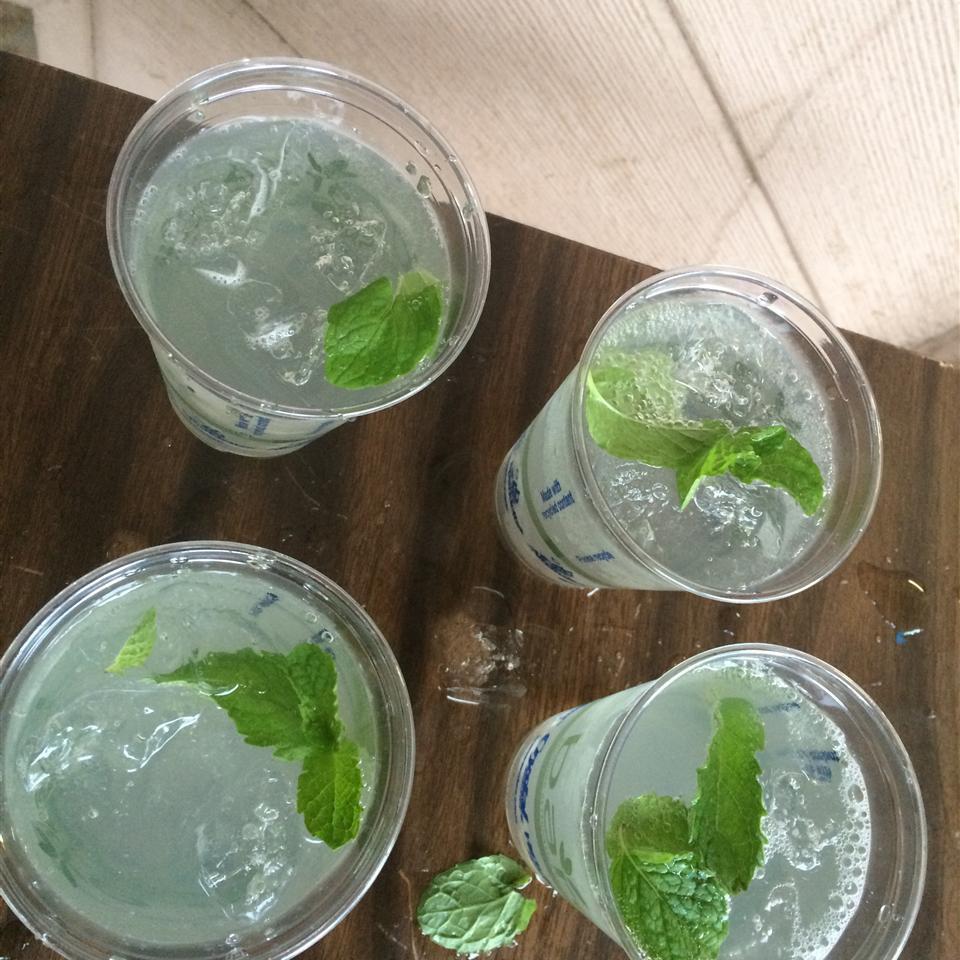 Alcohol-Free Mint Julep Roni B