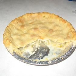 Rhubarb Custard Pie I SAM111948