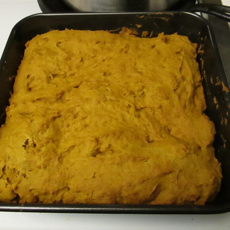Vegan Pumpkin Pie Blondies Luz