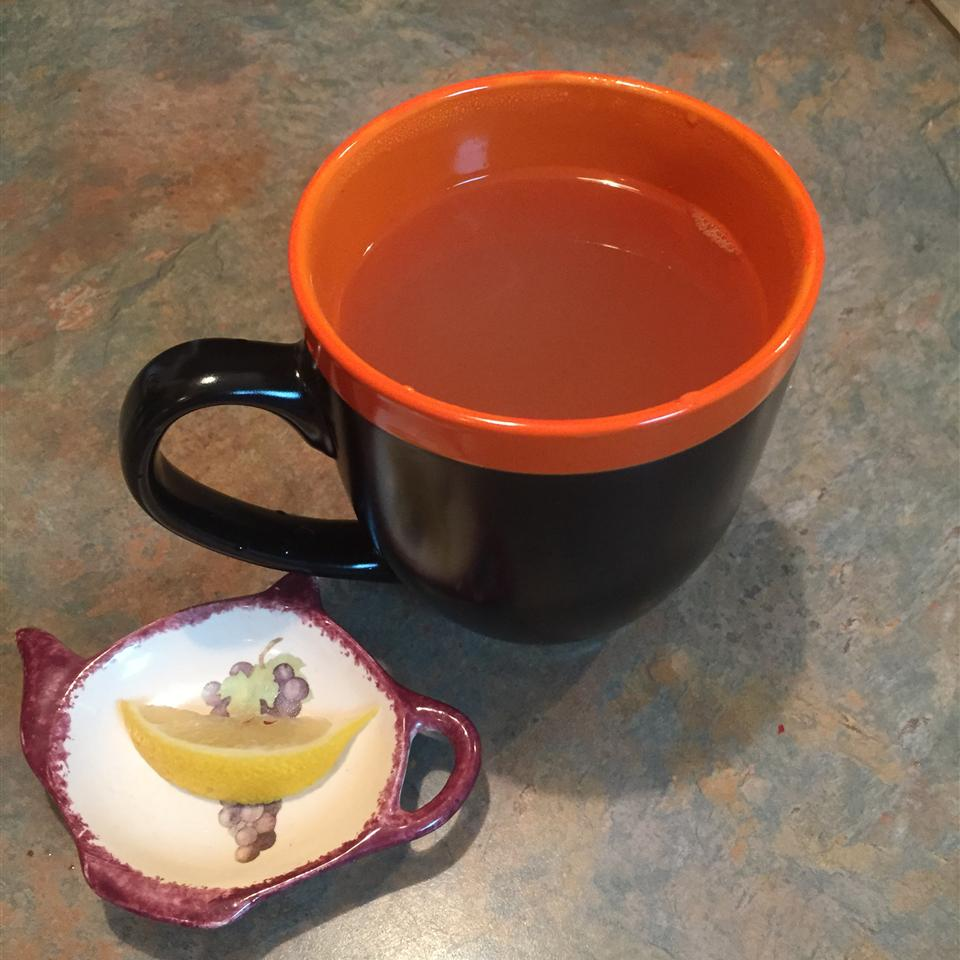 Warm Lemon, Honey, and Ginger Soother tcasa