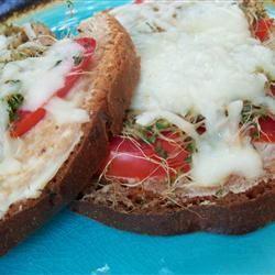 Most Excellent Sandwich pomplemousse