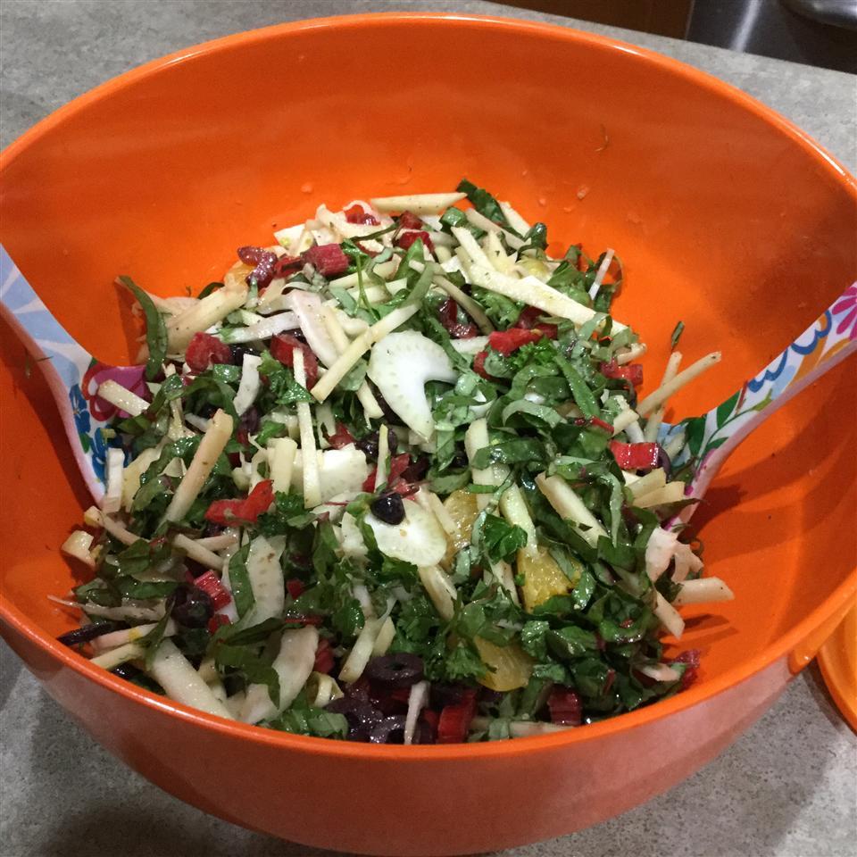 Fennel Apple Salad Tipster