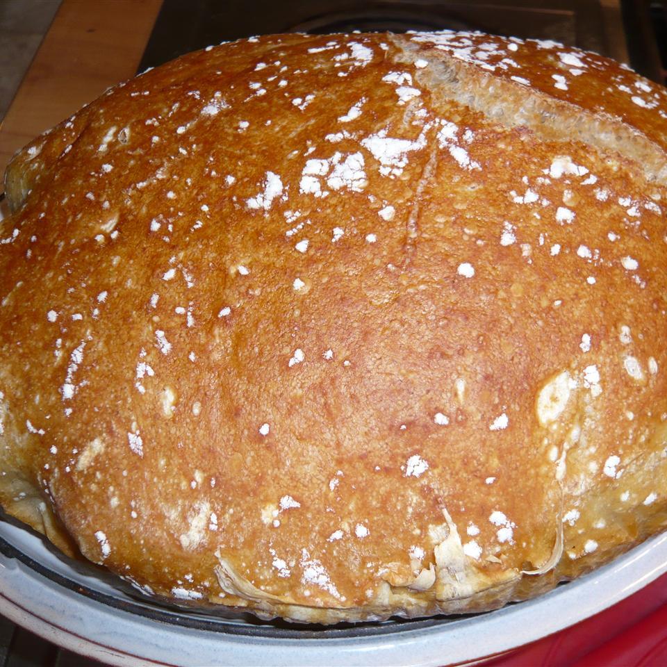 Chef John's No-Knead Ciabatta Jan Mowbray