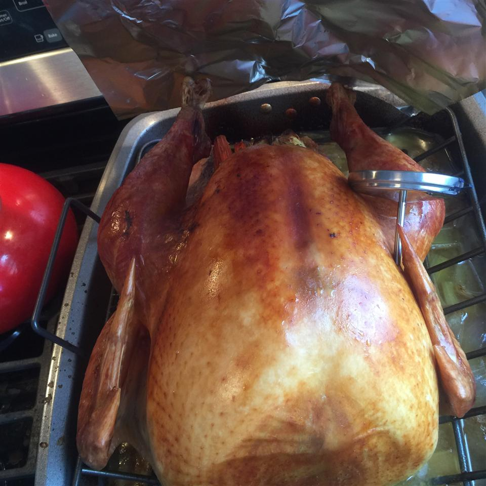 Brining and Cooking the Perfect Turkey with Delicious Gravy