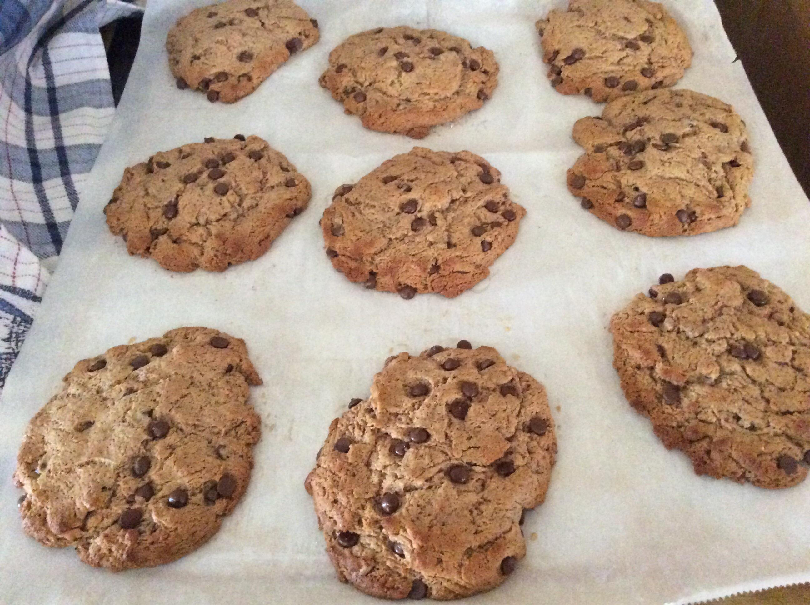 Paleo Chocolate Chip Cookies Patty Deering