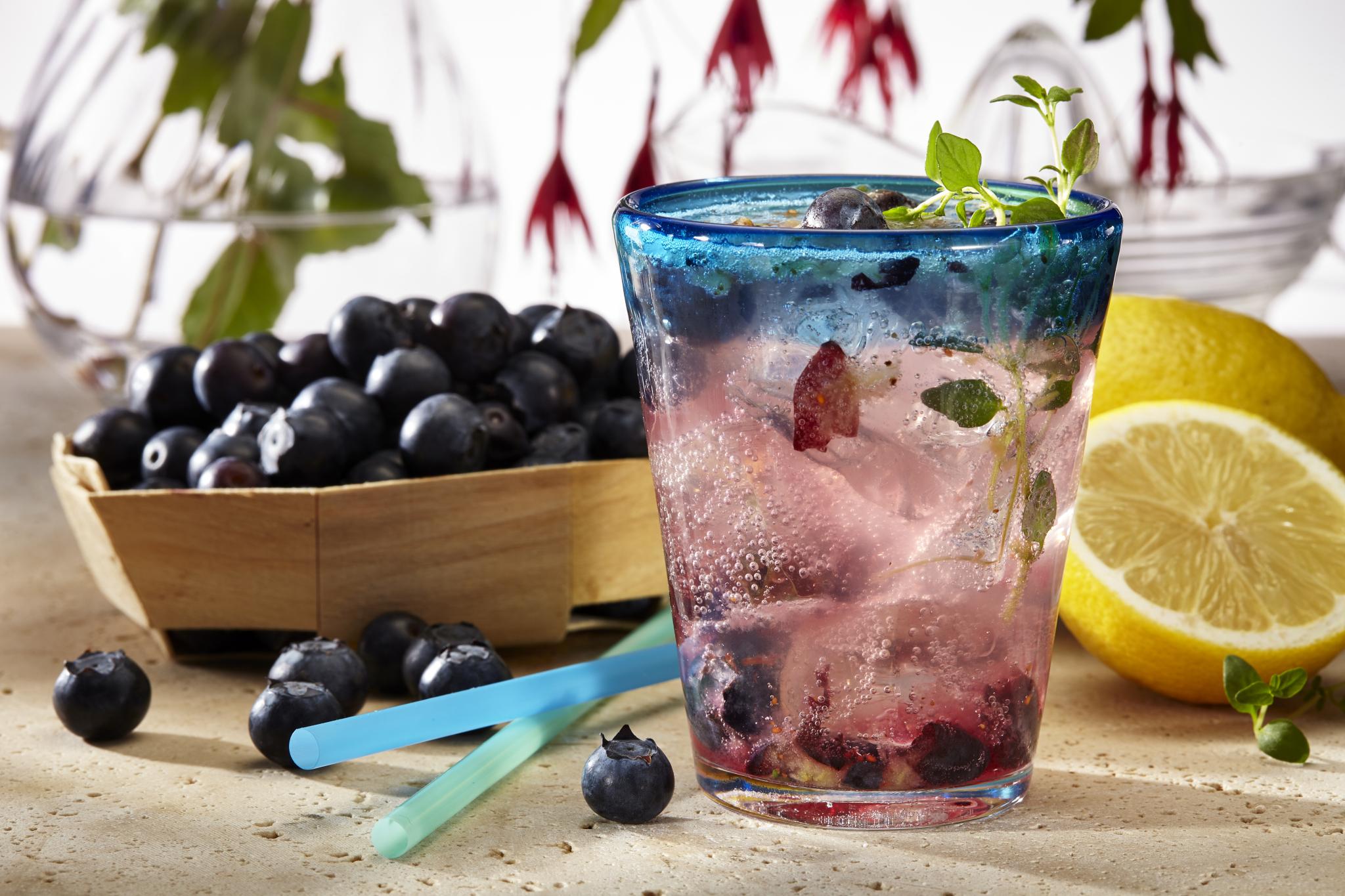 Blueberry Stevia Lemonade