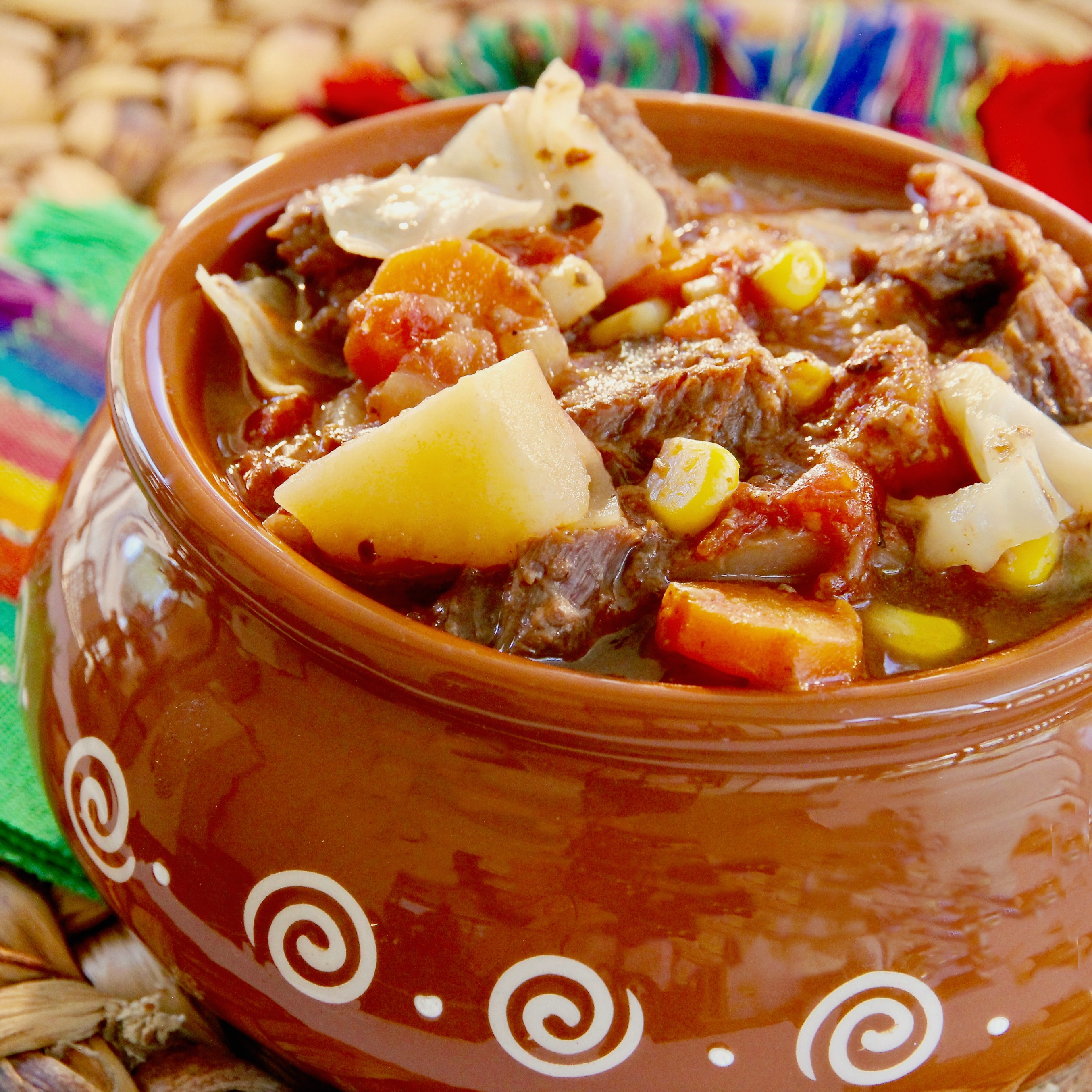 Mexican Beef and Vegetable Stew lutzflcat