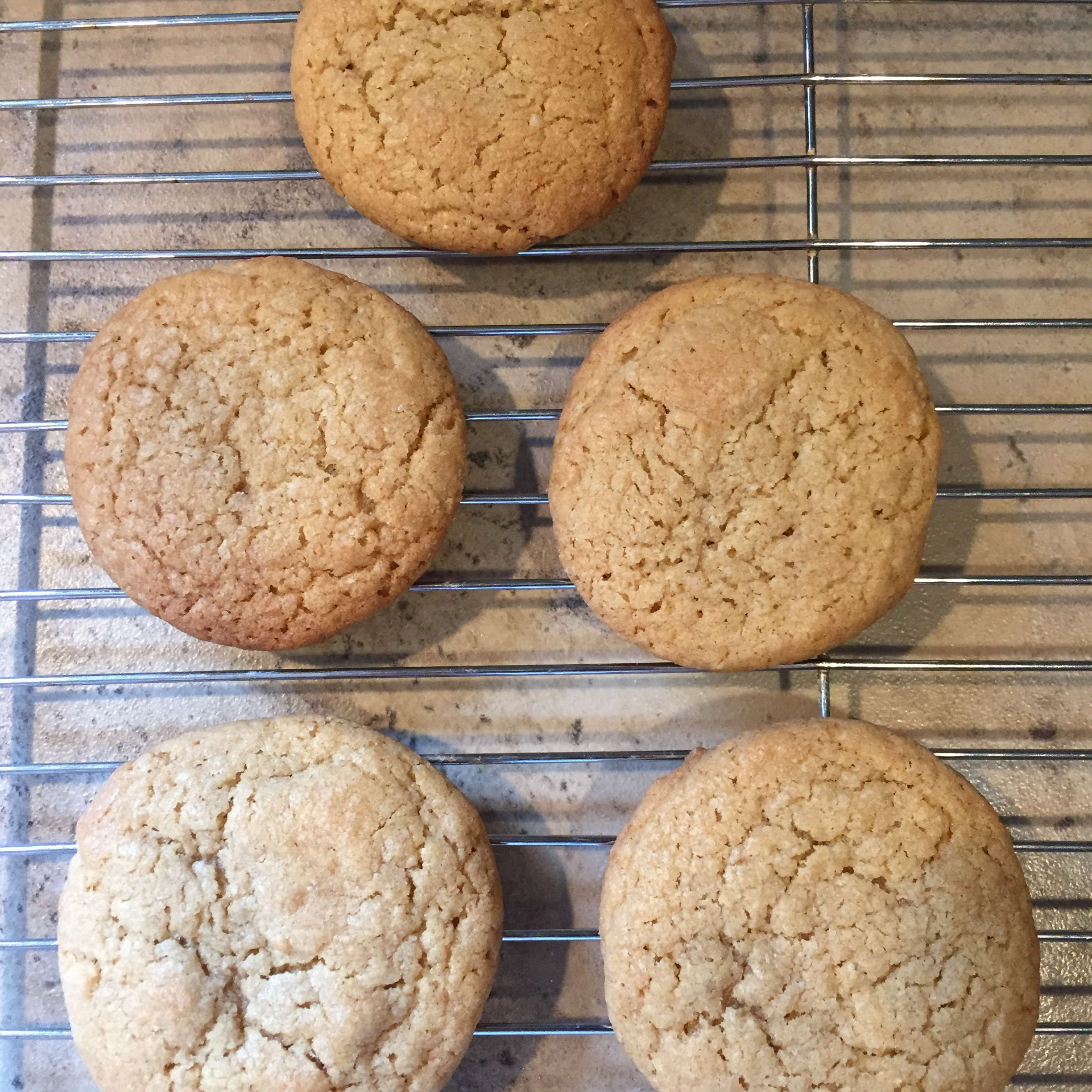Chocolate Chip Cookies V