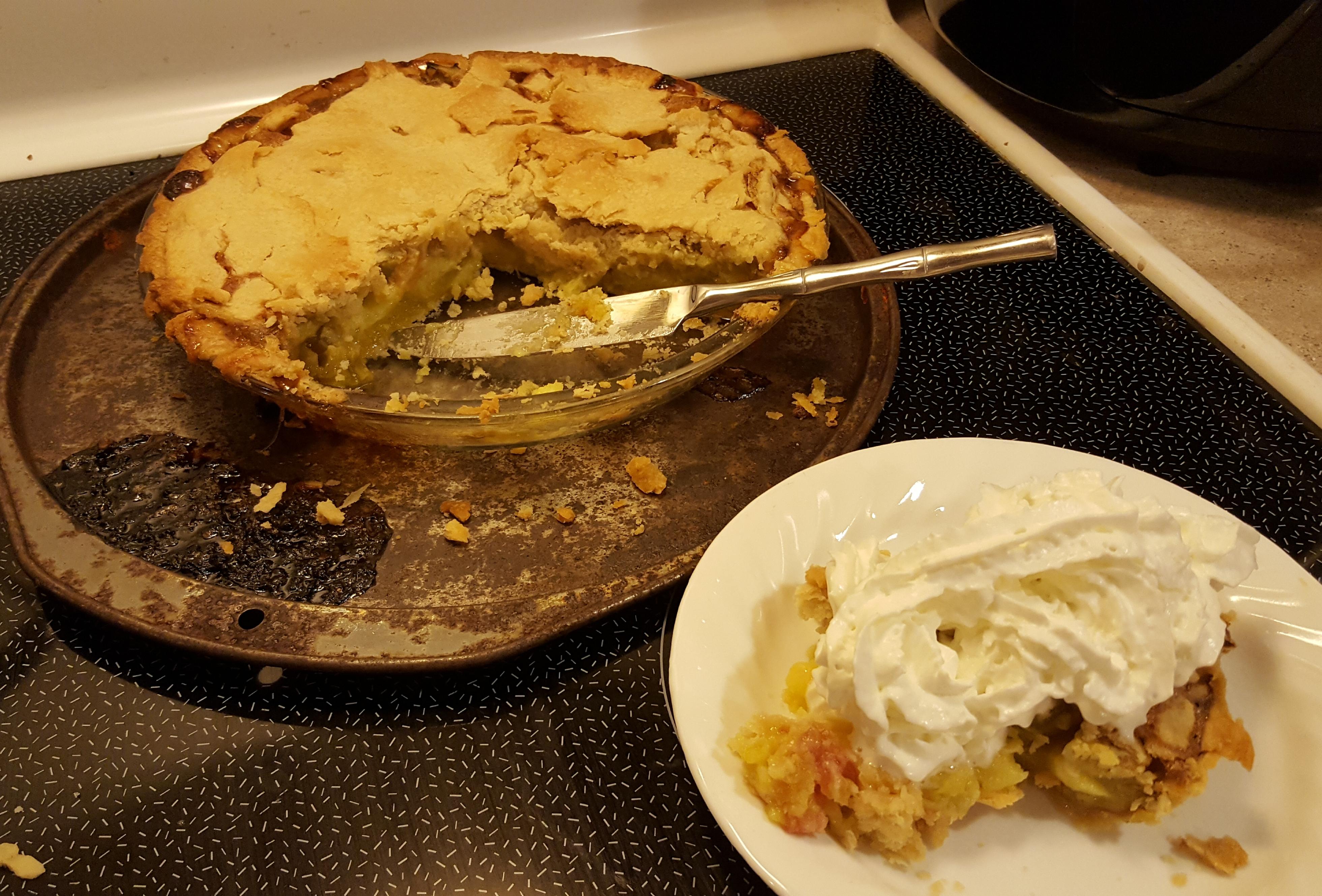 Rhubarb Custard Pie II Roxanne Sheldon Coffelt