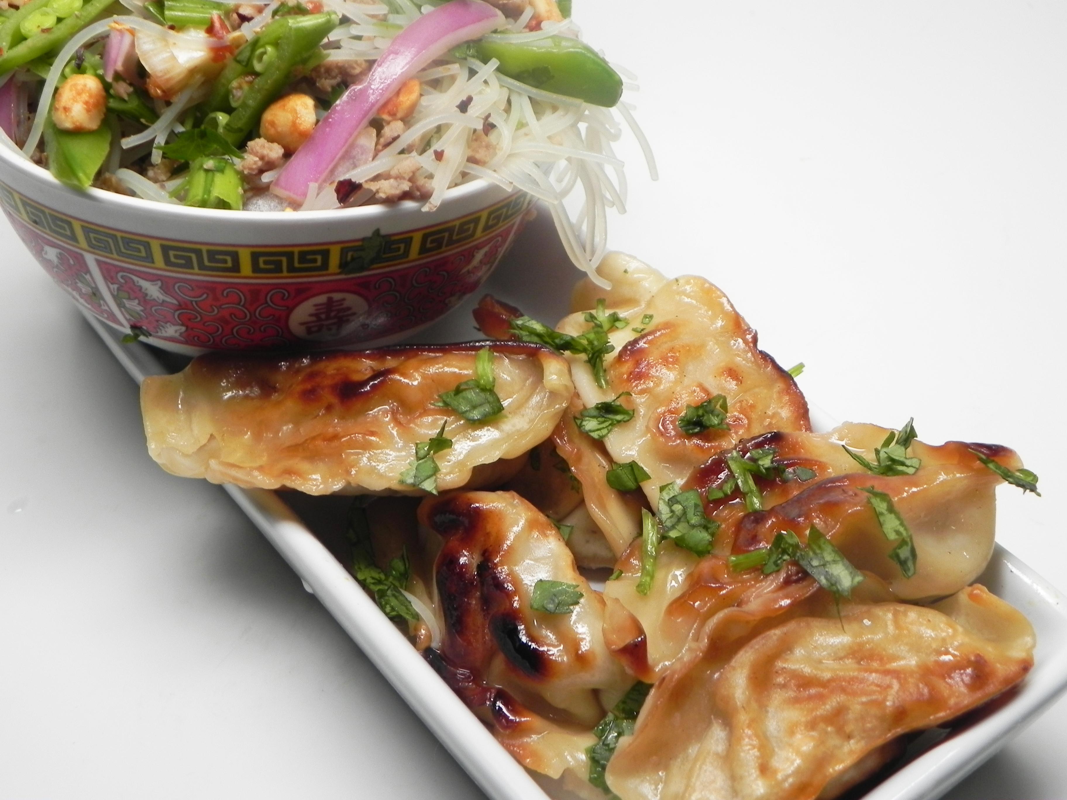 Pan-Fried Chinese Dumplings