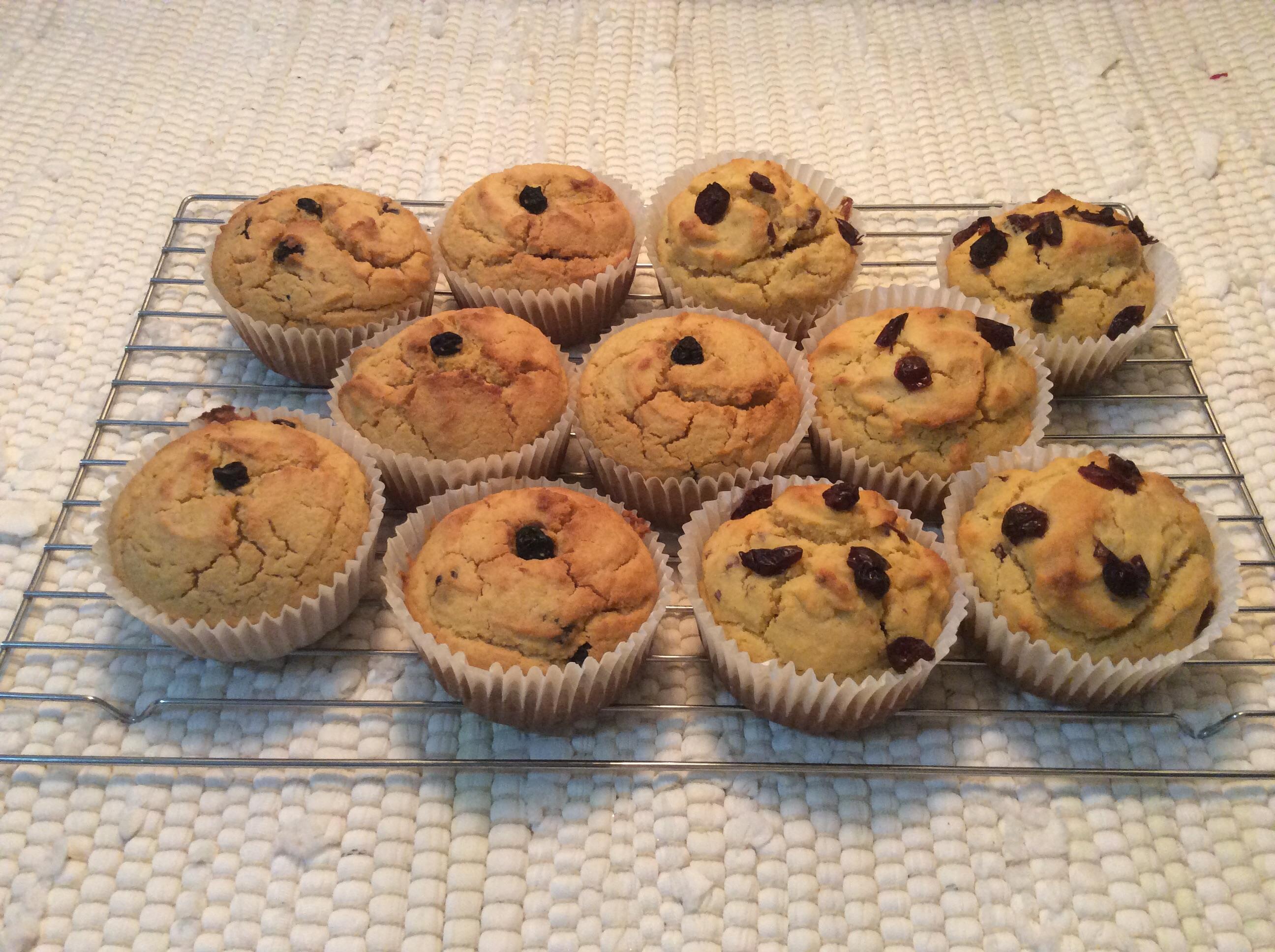 Basic Corn Muffins
