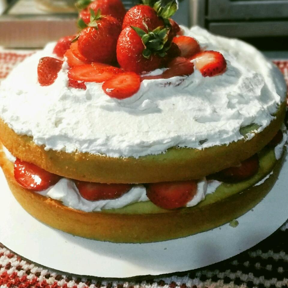 Sensational Strawberry Shortcake Lucia Rodriguez
