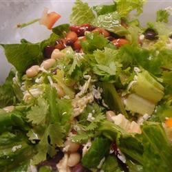 Summer Bean Salad I amandak23k