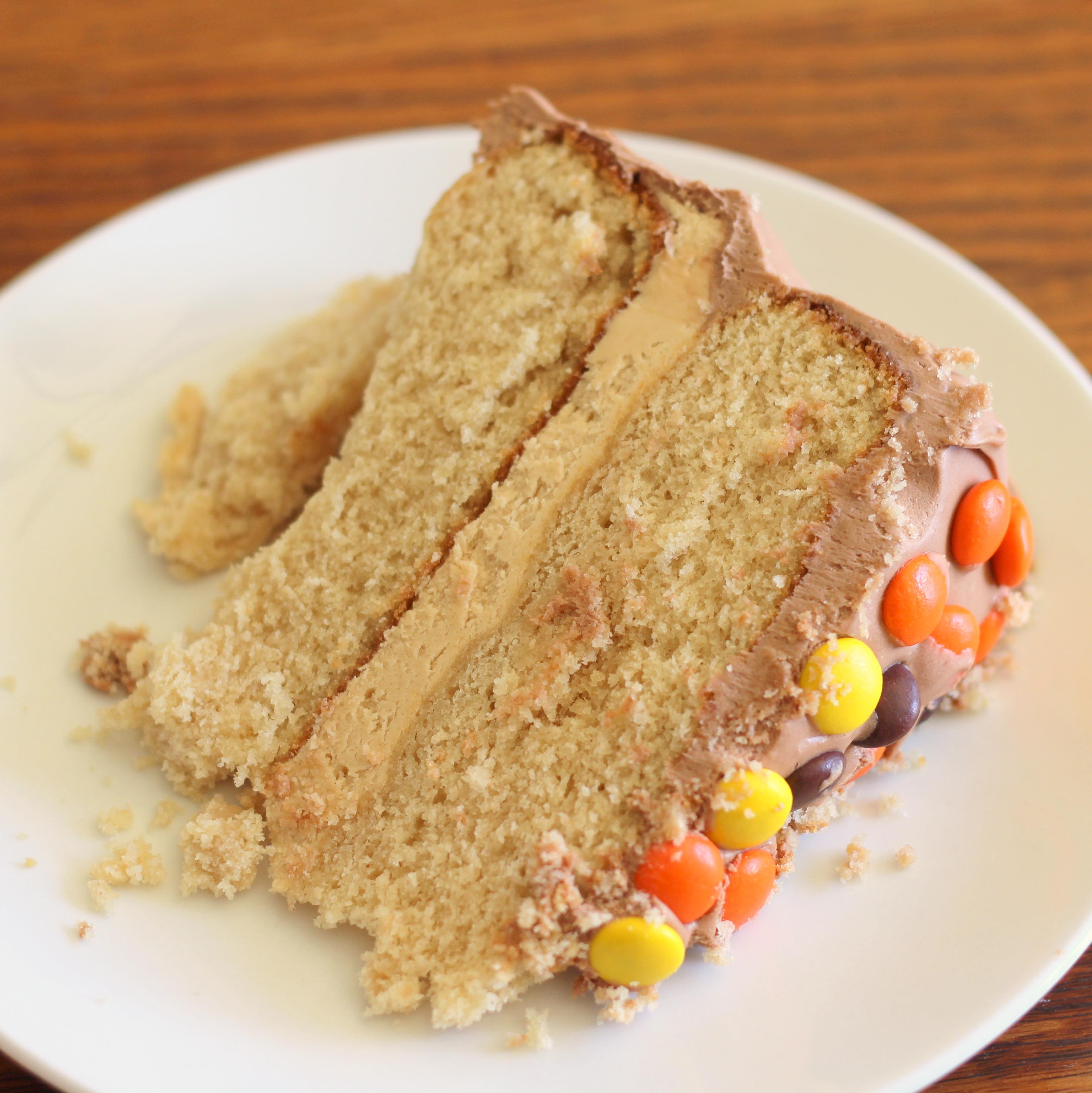 Peanut Butter and Chocolate Cake I