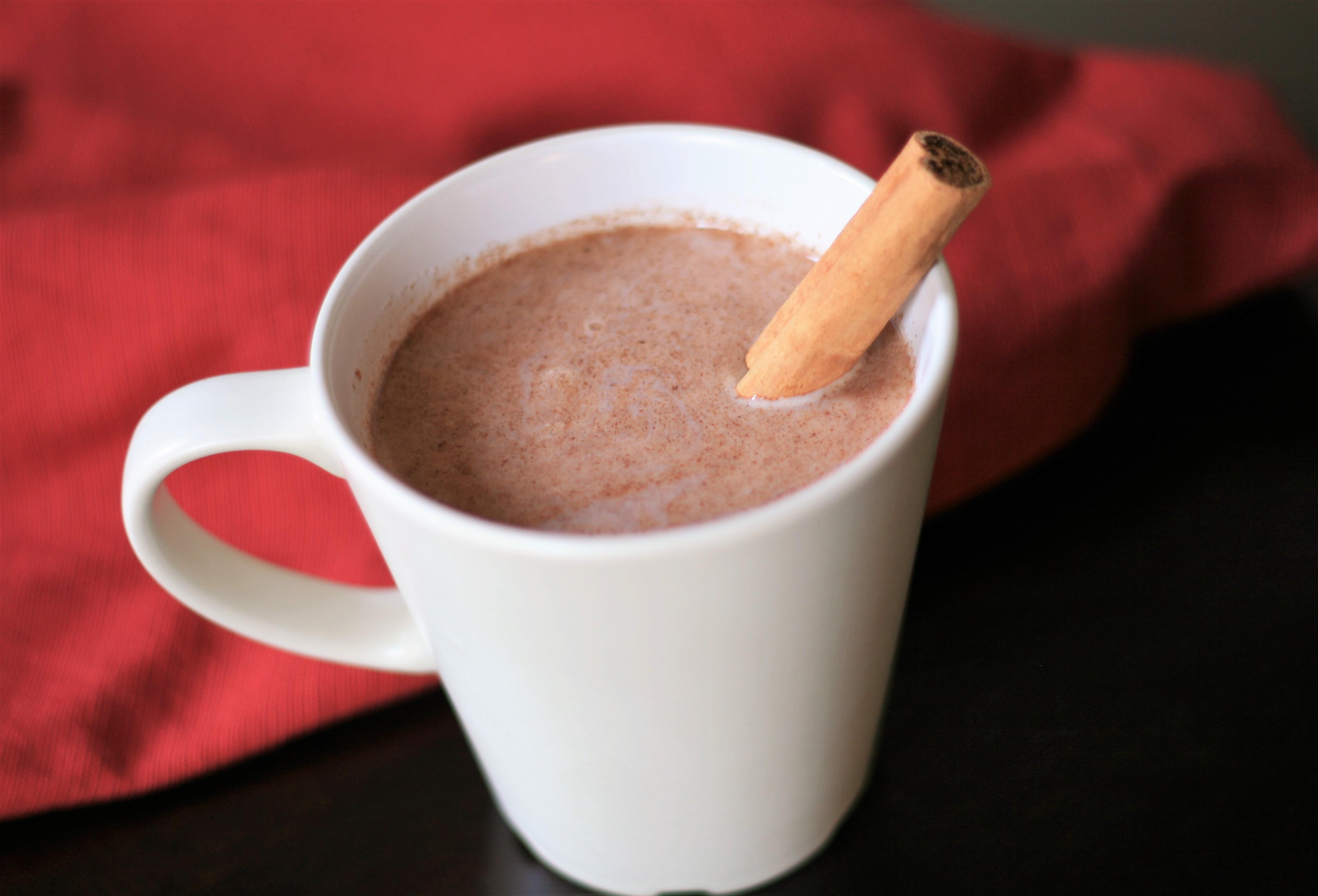 Quick Vegan Warm Sweet Cinnamon Milk