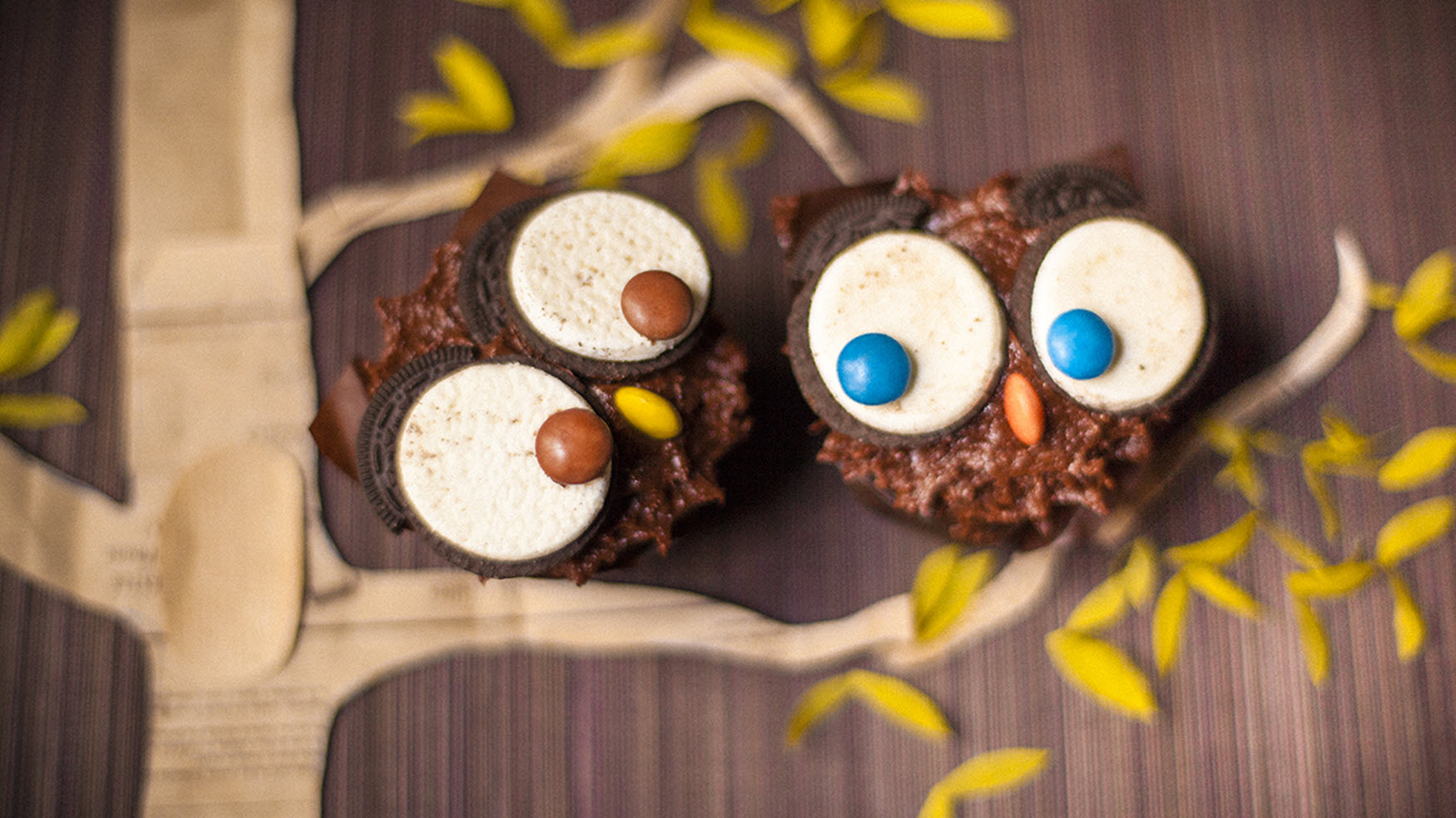 Owl Cupcakes Nesrine
