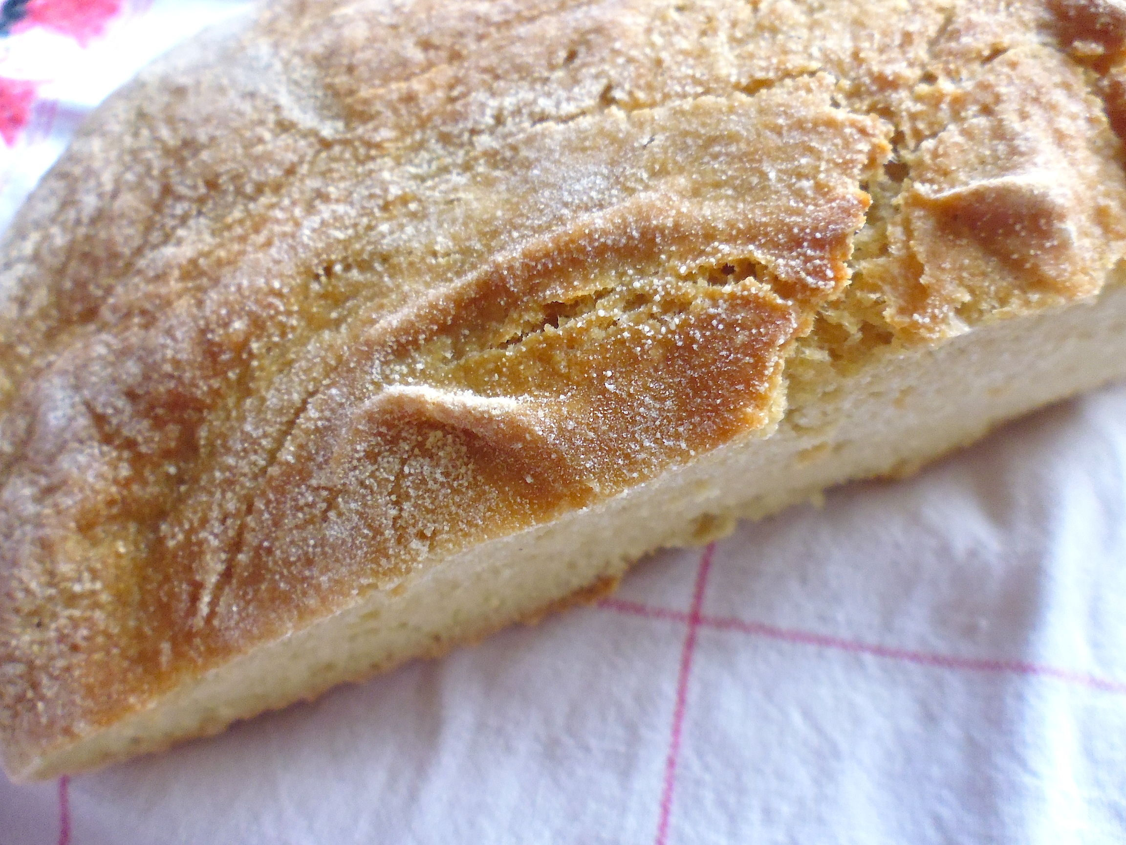 No-Knead Whole Wheat Bread with Sorghum Flour
